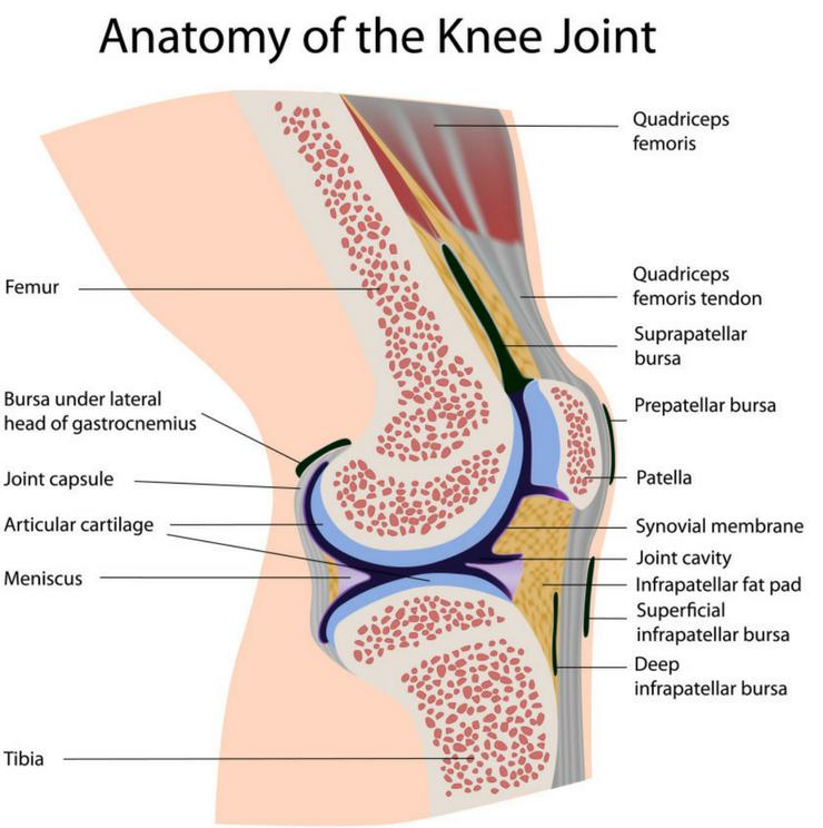 knee pain treatment in Nairobi, Knee surgeons in Kenya, Nairobi spine and orthopaedic Centre
